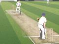 20/20 Cricket