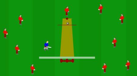 Screenshot - Mini Cricket